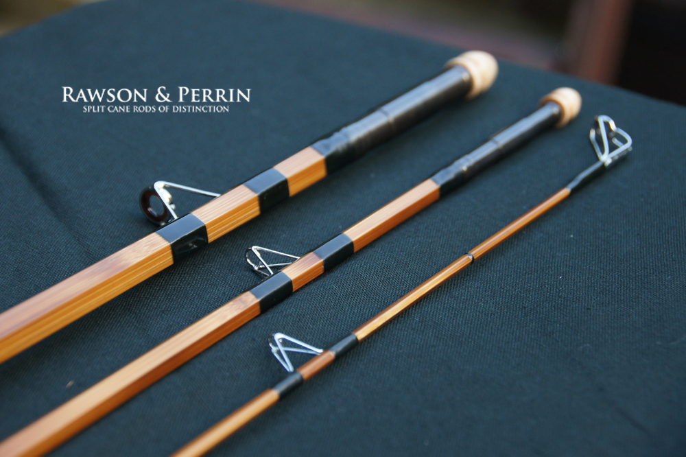 Birds dolphins and fishing rods rawson perrin for Fishing rods near me