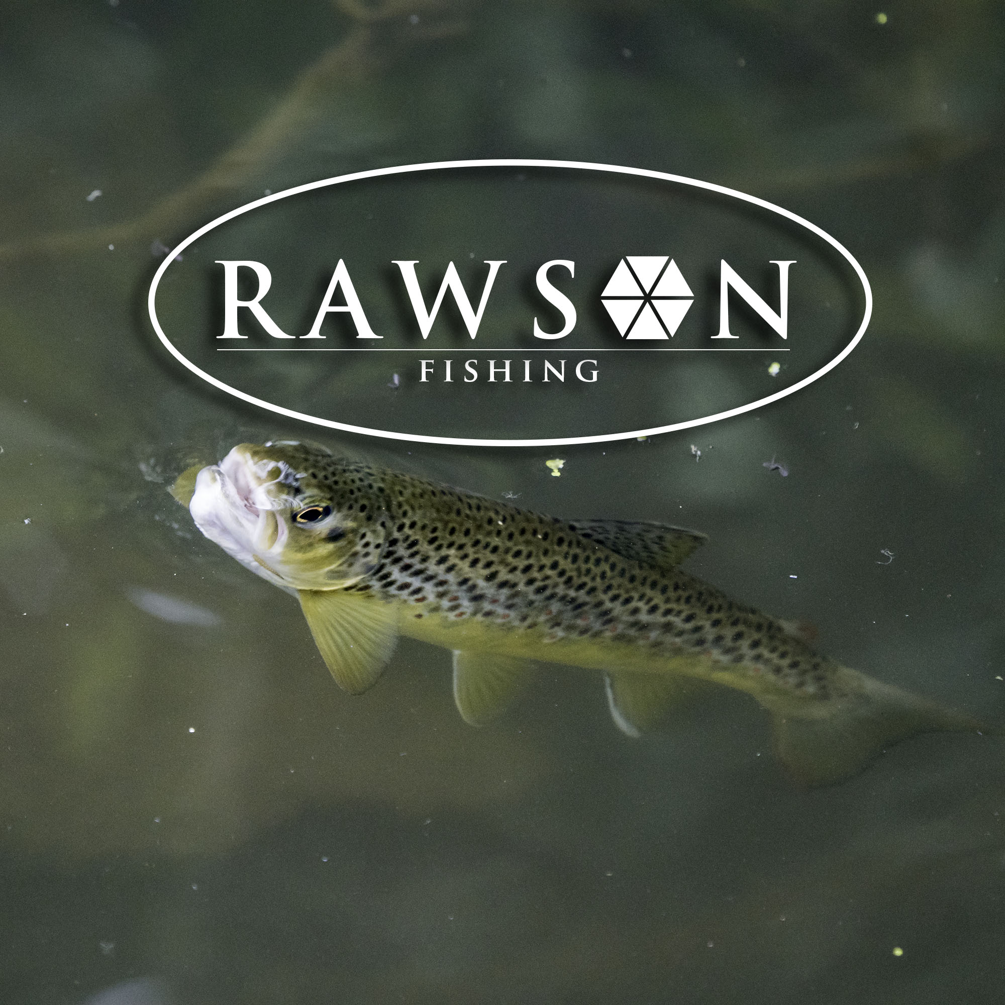 rawsonfishing.co.uk